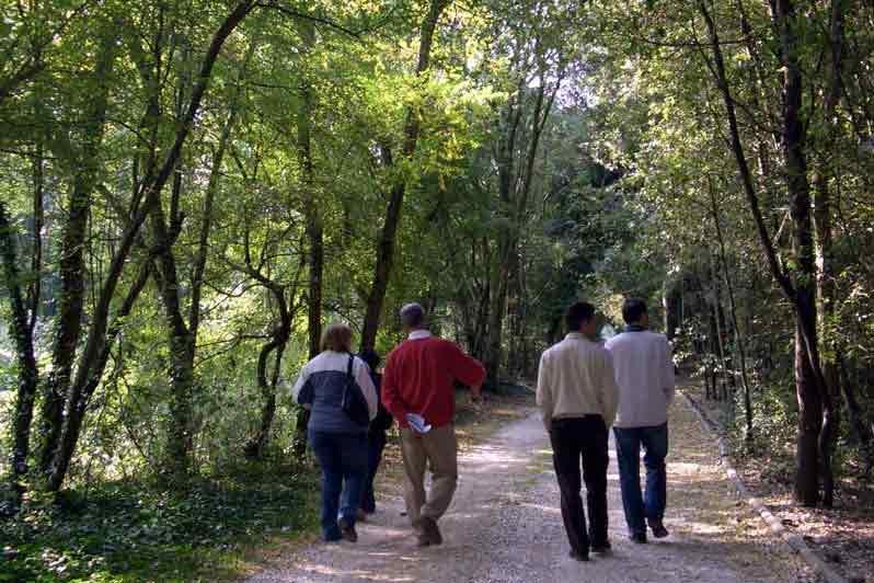 Agriturismo Zennare - Bosco Nordio, le visite