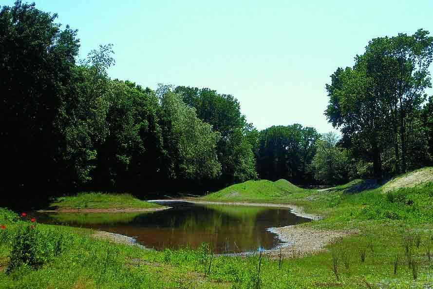 Agriturismo Zennare - Bosco Nordio, tra acqua e cielo