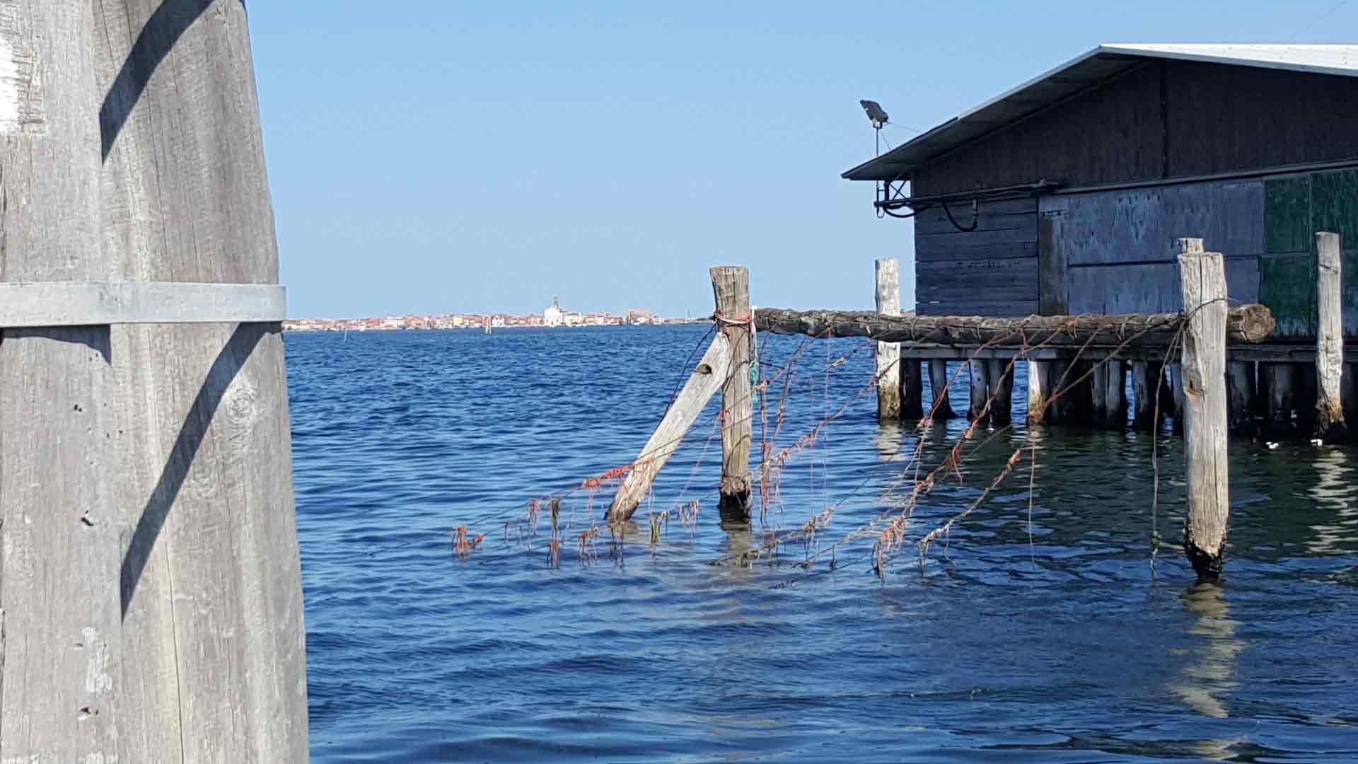 Pellestrina - La laguna